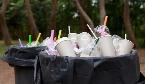 ống hút gây ô nghiễm môi trường